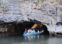 Langkawi-Mangrove-Tour-Crocodile-Cave
